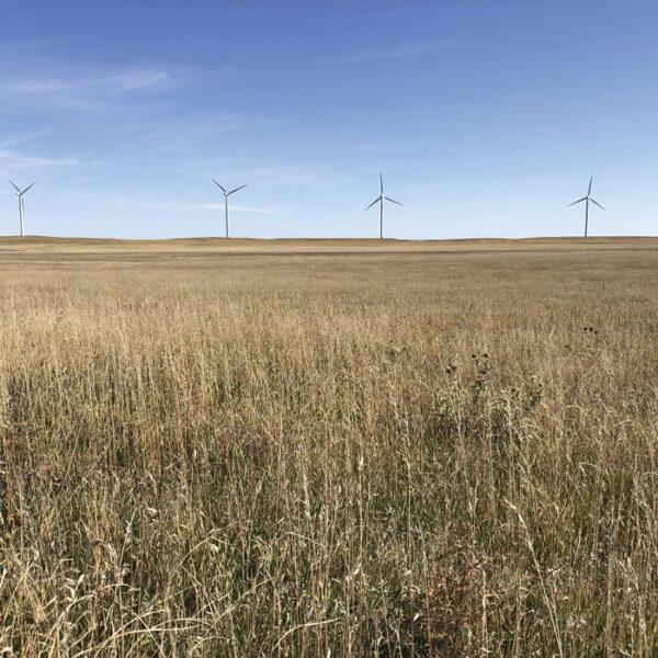 250MW_Wind_CO