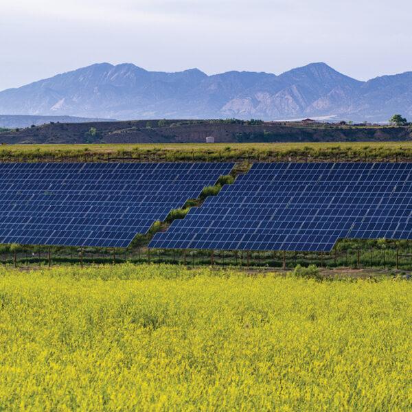 PP_8MW_Solar_CO3