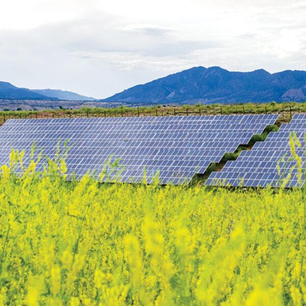 8 MW Confidential Solar Energy Project | Colorado
